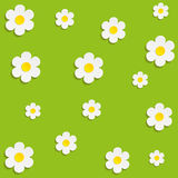 Beautiful Spring Flowers Green Background -Vector.  Stock Photos