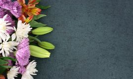 Beautiful Spring Flowers Over Blackboard Background royalty free stock images