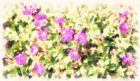 Beautiful spring flowers in sunny day in vintage tone Stock Image
