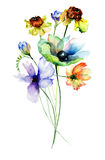 Beautiful Spring flowers Stock Images