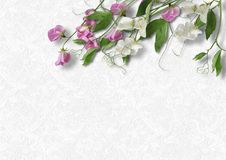Beautiful spring flowers on a white vintage background Royalty Free Stock Images