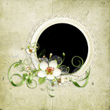 Beautiful spring frame with apple tree flowers Stock Photos