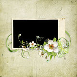 Beautiful spring frame with apple tree flowers Stock Image