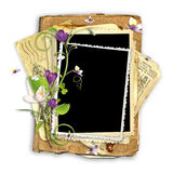 Beautiful spring frame with crocuses Royalty Free Stock Images
