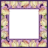 Beautiful spring frame made of rose flowers and leaves with veins. Square pink and purple frame with white background for a text. Watercolor painting. Hand royalty free illustration