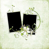 Beautiful spring frame with white cherry flowers Royalty Free Stock Photography