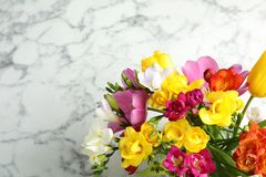 Beautiful spring freesia flowers on marble background, top view. Space for text stock photos