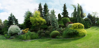 Beautiful spring garden design Stock Image