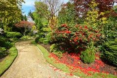 Beautiful spring garden Stock Image
