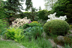 Beautiful spring garden design with rhododendron Stock Photography