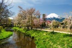 Sakura at Oshino Hakkai with mount Fuji. Beautiful spring garden and lake with cherry blossom or Sakura of Oshino Hakkai village with mount Fuji or Fujisan Royalty Free Stock Images