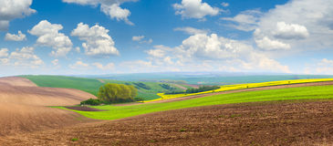 Beautiful spring hills landscape with colorful fields Royalty Free Stock Image