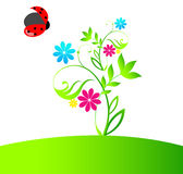 Beautiful spring ladybug Royalty Free Stock Photography