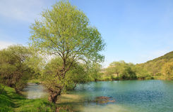 Beautiful  spring lake Stock Photos