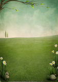Beautiful spring landscape Stock Photos