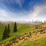 Beautiful spring landscape Stock Image