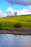 Beautiful Spring landscape Royalty Free Stock Photography