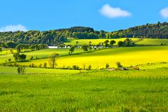Beautiful, Spring landscape Stock Photo