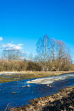Beautiful spring landscape. royalty free stock photography