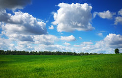 Beautiful spring landscape. Royalty Free Stock Images
