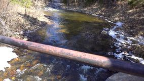 Beautiful spring landscape with forest, river and stones, wild nature. Media. Flowing clear river in the wood in a sunny