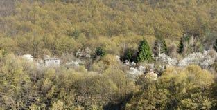 Beautiful spring landscape from iskar gorge Stock Photos