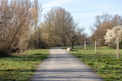Beautiful spring landscape at the morning park in Frankenthal royalty free stock photography
