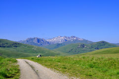 Beautiful spring Landscape. A mountain landscape in early spring, Shar mountain, Kosovo Royalty Free Stock Photo