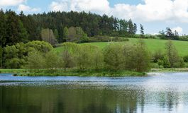 Beautiful spring landscape with small pond. Royalty Free Stock Photos
