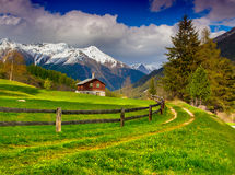 Beautiful spring landscape in the Swiss Alps. stock photos