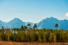 Beautiful spring landscape of the Western Sayan mountains Royalty Free Stock Photos