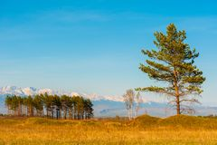 Beautiful spring landscape of the Western Sayan mountains Stock Photos