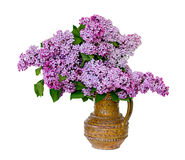Beautiful spring lilac bouquet in clay vase Stock Photo