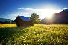 Beautiful spring meadow. Sunny clear sky with hut in mountains. Colorful field full of flowers. Grainau, Germany stock photo
