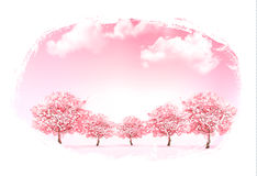 Beautiful spring nature background with trees. Royalty Free Stock Photo