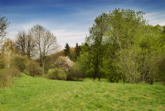 Beautiful spring nature landscape Royalty Free Stock Photo