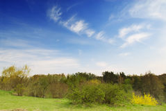 Beautiful spring nature landscape Royalty Free Stock Photography