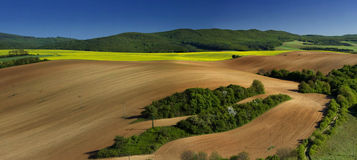 Beautiful spring panoramatic shot with a meadow Royalty Free Stock Photo
