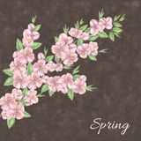Beautiful spring pattern Stock Photos