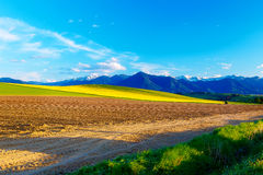 Beautiful spring plowed field and green and yellow meadow. Mountain in background. Stock Photos