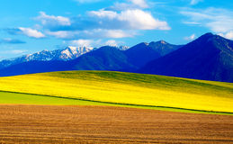 Beautiful spring plowed field and green and yellow meadow. Mountain in background. Slovakia, Central Europe, Liptov. Beautiful spring plowed field and green and Stock Photo