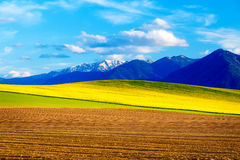 Beautiful spring plowed field and green and yellow meadow. Mountain in background. Slovakia, Central Europe, Liptov. Mountain High Tatry Stock Images