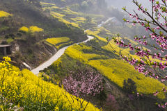 Beautiful spring road Stock Images