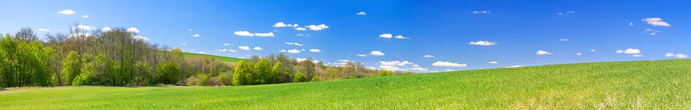 Spring rural landscape with field and blue sky, a panorama. Beautiful spring rural landscape with field and blue sky, a panorama. agricultural field panoramic Royalty Free Stock Photography