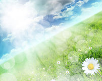 Beautiful spring scenery Royalty Free Stock Images