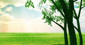 Free Beautiful Spring Scenery Stock Photo - 5687870