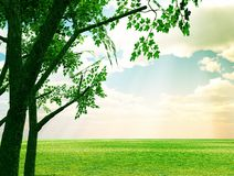 Beautiful Spring Scenery Stock Images