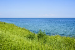 Beautiful spring seascape with green grass Royalty Free Stock Photography
