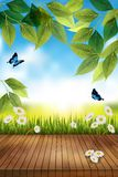 Beautiful spring or summer landscape with empty table. Vector royalty free stock image