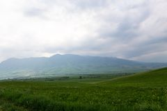 Beautiful spring and summer landscape. Lush green hills, high mountains. Bright green grass. Spring flowering grass. Beautiful spring and summer landscape. Lush royalty free stock images